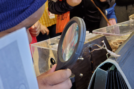 student looking at bug through magnifying glass